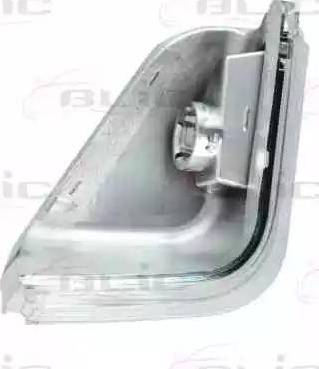 BLIC 5403-03-10010P - Боковой фонарь, указатель поворота mavto.com.ua