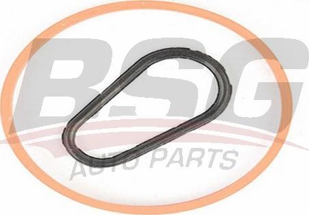 BSG BSG 30-235-008 - Комплект прокладок, вакуумный насос mavto.com.ua