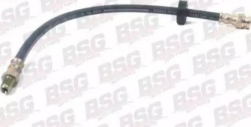 BSG BSG 70-730-002 - Тормозной шланг mavto.com.ua