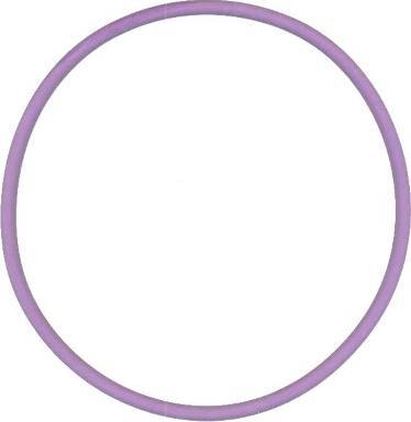 Elring 813.583 - Уплотнительное кольцо, гильза цилиндра mavto.com.ua