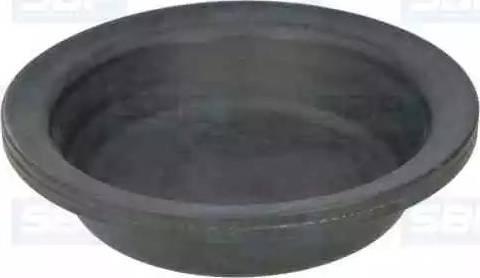 SBP 05-DMT12 - Мембрана, мембранный тормозной цилиндр mavto.com.ua